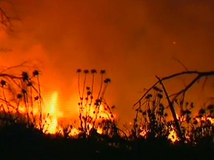 שריפה בעקבות קסאם (צילום: חדשות 2)