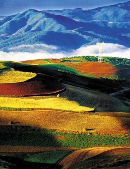 שדות צבעוניים בסין על רקע הרים