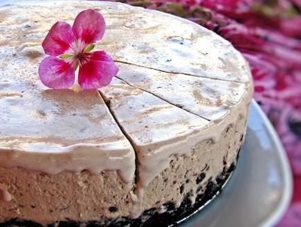 עוגת בראוני קפואה בגלידת מוקה פקאן סיני ברוטב טופי (צילום: דליה מאיר, קסמים מתוקים)