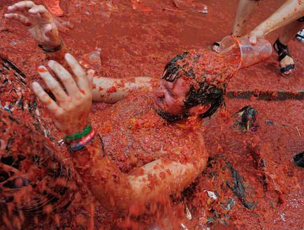 פסטיבל טומטינה 2011 (צילום: Denis Doyle, GettyImages IL)