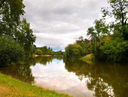 יער בולון  (צילום: istockphoto)