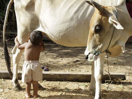 """הילד הקמבודי וה""""אם החלופית"""" (צילום: AP)"""