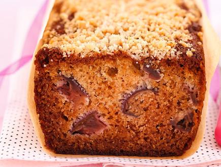 עוגת דבש ושזיפים (צילום: דן פרץ)