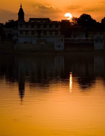 פושקר הודו (צילום: Vitor_Martinho, Istock)