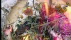 פוקצ'ה סרדינים (צילום: מאסטר שף)