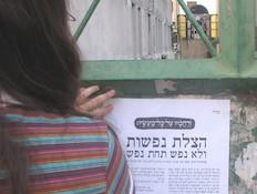 חברי ארגון אנונימוס תולים פלייר נגד מנהג הכפרות (צילום: ארגון אנונימוס)