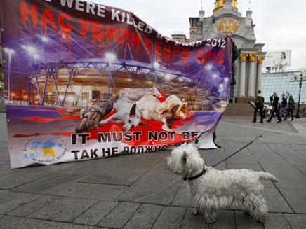 הפגנה נגד ההתאכזרות לבעלי חיים (צילום: AP)