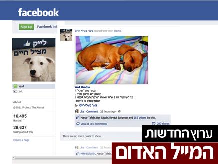 תרמית בפייסבוק (צילום: פייסבוק / המייל האדום)