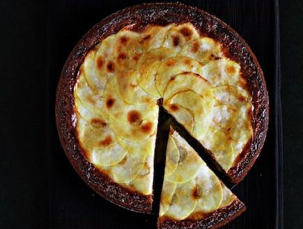 עוגת תפוחים מתובלת (צילום: ליסה ברבר, תיאבון בריא, פן הוצאה לאור)