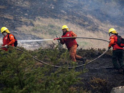 הכבאים מנסים להשתלט על האש (צילום: רויטרס)