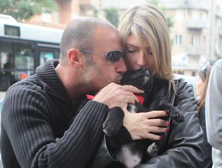 יום אימוץ כלבים 2012 (צילום: ראובן שניידר )