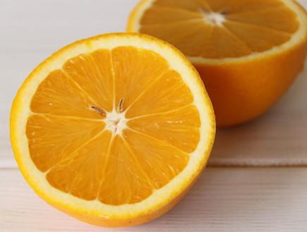 עוגת תפוזים ושוקולד  (צילום: חן שוקרון)