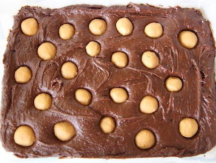 בראוניז, חמאת בוטנים (צילום: חן שוקרון, אוכל טוב)