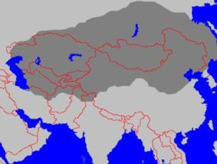ג'ינגיס ח'אן – הכובש הירוק ביותר בהיסטוריה (צילום: ויקיפדיה)
