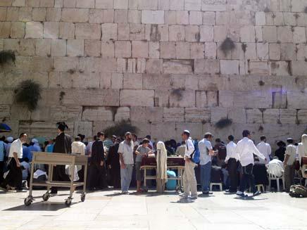 מתפללים בכותל המערבי, תשעה באב (צילום: חדשות 2)