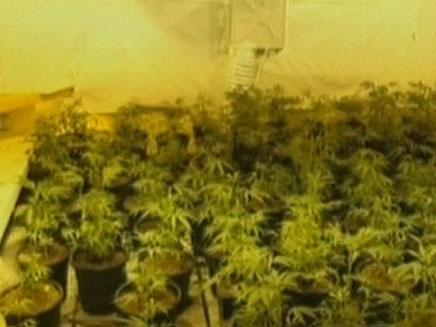 הפך את המקלט למעבדת סמים (צילום: חדשות 2)