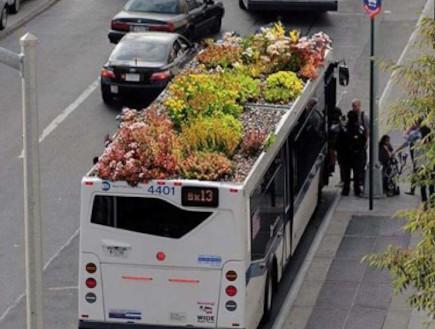גינות נוסעות: פיתרון יצירתי לאפרוריות העירונית (וידאו WMV: busroots.org)