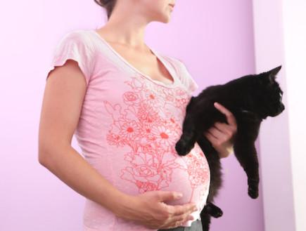 אישה בהריון עם חתול (צילום: אימג'בנק / Thinkstock)