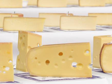 עשרות טונות של גבינה. אילוסטרציה (צילום: רויטרס)