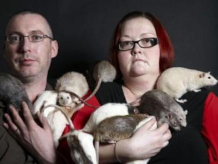 הזוג שמגדל 28 חולדות מחמד (וידאו WMV: metro.co.uk)