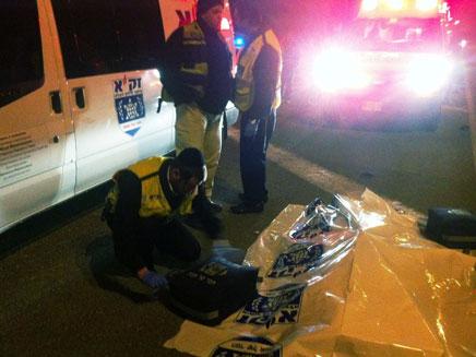 זירת התאונה, הלילה בכביש 5 (צילום: בערלה יעקובוביץ)