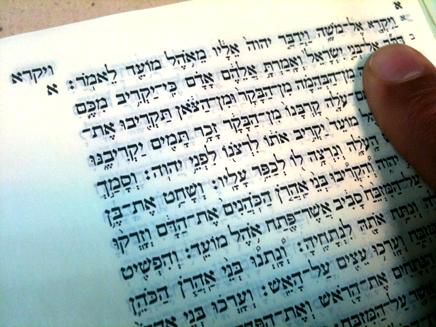 פרשת ויקרא (צילום: דניאל נחמיה, חדשות 2)