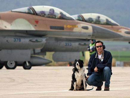 סטרייק ומאמנו. כלב נגד ציפורים (צילום: חיל האויר)