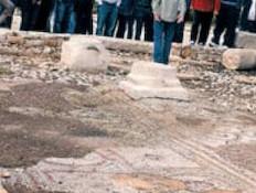 גת עתיקה בלב העיר כרמיאל - באמת הגיע הזמן (צילום: אורלי גנוסר, גלובס)