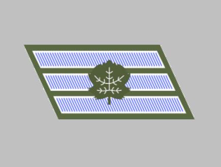 סמל ראשון (צילום: ויקיפדיה)