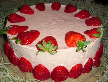 עוגת גבינה ותות (צילום: אביבה פיבקו, אוכל טוב)