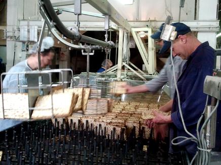 צפו: הצצה לפס ייצור המצות (צילום: עזרי עמרם, חדשות 2)