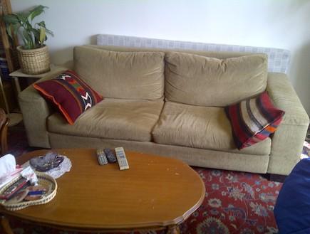 הספה של אליען לזובסקי (צילום: אליען לזובסקי)