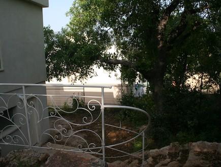 הבית בטבעון - ירידה אחורית (צילום: תומר ושחר צלמים)