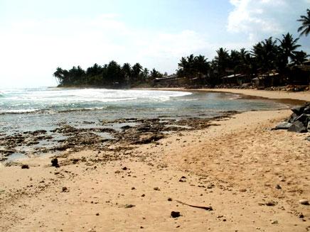 חוף ים , סרי לנקה (צילום: חדשות 2)