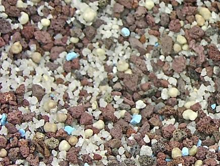 גינון - טרקוטם (צילום: נלקח מאתר: httpdesertification.wordpress.com)