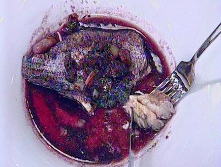 דג ביין אדם (תמונת AVI: mako)