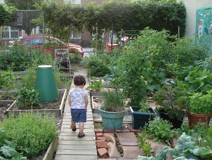 צמחי מאכל. גינה קהילתית (צילום: מתוך האתר www.bodinestreetgarden.org)