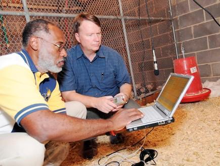 הלוחשים לתרנגולות (צילום: gatech.edu)
