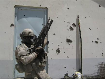 מגן פנים (צילום: MTek)
