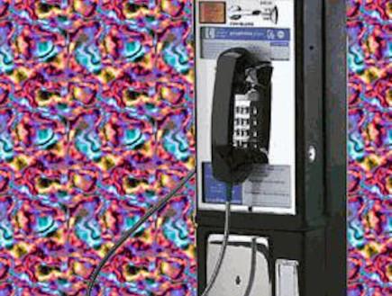מוזיאון הצלילים שנכחדו (צילום: savethesounds.info)