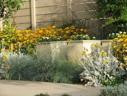 כדים בגינה לאחר שיפוץ (צילום: עתר ארזי, living)