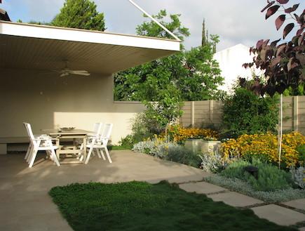 פרגולה בגינה אחרי שיפוץ (צילום: עתר ארזי, living)