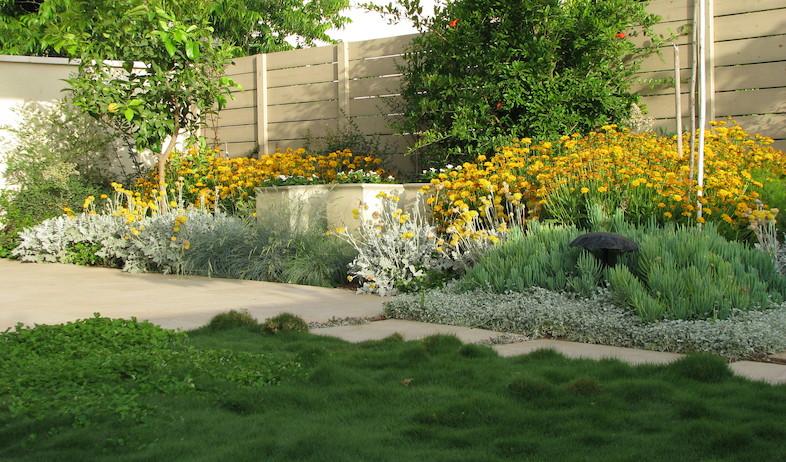 ערוגות בגינה אחרי שיפוץ (צילום: עתר ארזי, living)
