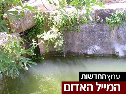 מעיין (צילום: חדשות 2)