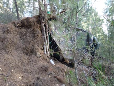 המבנה שהתגלה בלב היער ועורר תדהמה (צילום: חדשות 2)