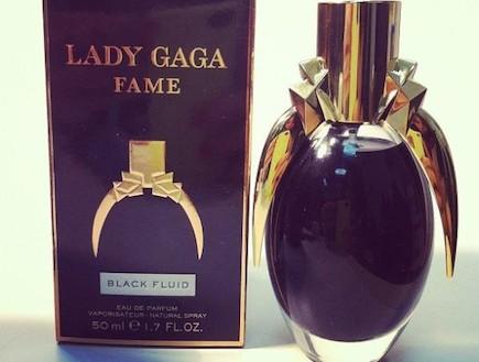 fame של ליידי גאגא (צילום: טוויטר)