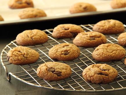 עוגיות שוקולד צ'יפס עם חמאה חומה (צילום: חן שוקרון, אוכל טוב)