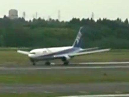 מטוס הנוסעים ביפן (צילום: חדשות 2)