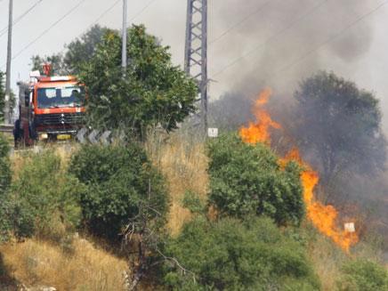 שריפה בגולן. ארכיון (צילום: מיכל שלאק, גולשת חדשות 2 באינטרנט)