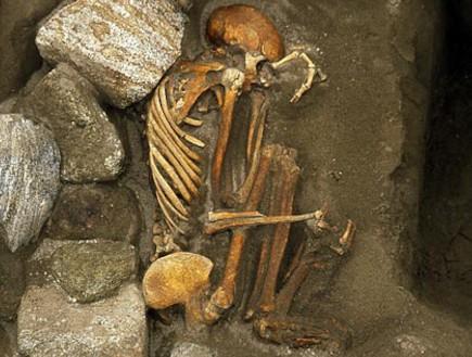 פרנקנשטיין הפרה-היסטורי (צילום: nationalgeographic.com)